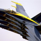 Blue Angels F-18 Hornet aerial demonstration team Photograph 8X12