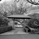 Black and White Photo 8X10 Terrace Gate Kykuit Japanese Garden New York