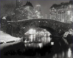 Black and White Photo 8X10 New York Pond in Winter