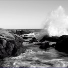 Black and White Photo 8X10 Ship Harbor Wave