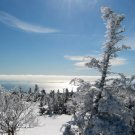 Acadia National Park Winter Atop Cadillac 8X10 Photograph
