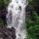 Acadia National Park Summer Waterfall 11x14 Photograph