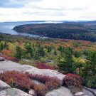 Acadia National Park View from Gorham Mountain 8X10 Photograph