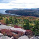 Acadia National Park View from Gorham Mountain 12x16 Canvas