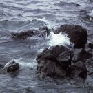 Yellowstone National Park Rocky shoreline Yellowstone Lake 8X10 Photograph