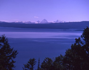 Yellowstone National Park Yellowstone Lake from Lake Butte 12x16 Canvas