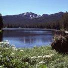 Yellowstone National Park Sylvan Lake 11x14 Photograph