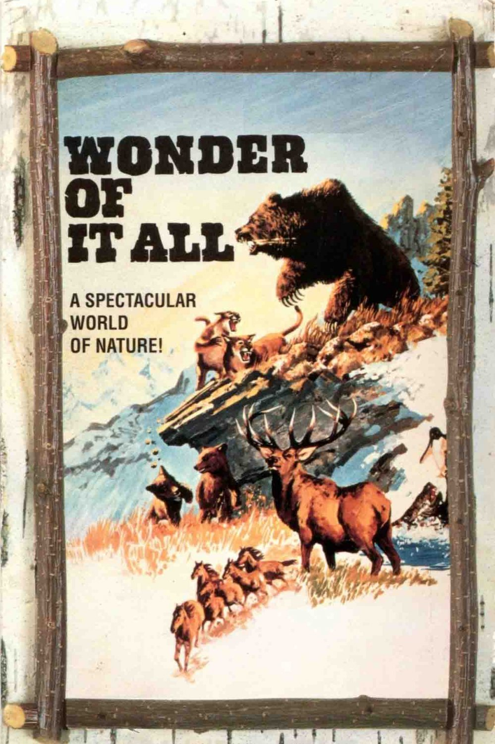Wonder of it All DVD Nature Documentary