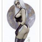 Hot Black Kitty Dw#224 - Sexy Black Cat Pinup Girl Print