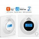 Wifi app control and alarm notify CO wireless alarm
