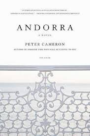 FREE SHIPPING !  Andorra: A Novel (Paperback � 2009) by Peter Cameron