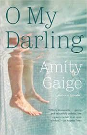 O My Darling: A Novel (Paperback � 2013) by Amity Gaige
