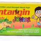 Antangin Junior with honey mint herbal Syrup 5-ct, 50 Ml (Pack of 4)