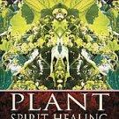 Plant Spirit Healing by Pam Montgomery (2008, Paperback)