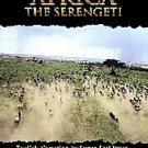 IMAX - Africa: The Serengeti (DVD, 1998)