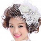 BRIDAL WEDDING BRIDES RHINESTONE CRYSTAL FLOWER LACE BIRDCAGE VEIL NET HAIR CLIP