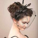White Beige Black Birdcage Veil Feather Fascinator Bridal Wedding Hair Clip