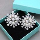 Ivory Pearl Rhinestone Crystal Wedding Bridal Snowflake Crystal Shoe Clips Pair
