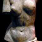 Venus de Milo Torso statue sculpture