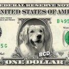 GOLDEN RETRIEVER on REAL Dollar Bill Pet Dog - Cash Money Art