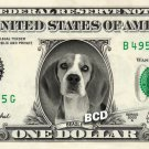 BEAGLE on REAL Dollar Bill Pet Dog - Cash Money Art