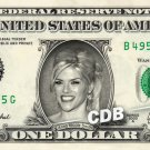 ANNA NICOLE SMITH on a REAL Dollar Bill Cash Money Memorabilia Collectible Bank
