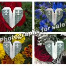 4 PICTURES for Sale - Beautiful Money Origami Hearts w/ Flower Backgrounds Cash