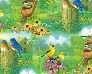Spring Birds Fabric FQ