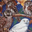 Night Owls on a tree Fabric FQ -rare Fat Quarter