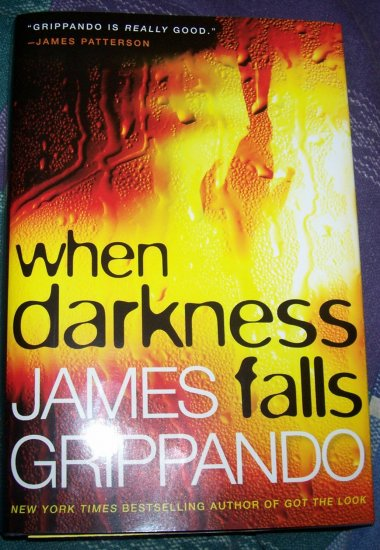when darkness fall,by James Grippando