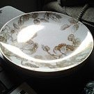 Glass Plates Set of 4