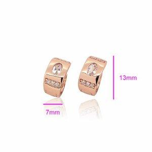 18KT Gold Zircon Earrings