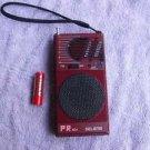 Rare Vintage  Russian Soviet Made In USSR Pocket AM FM Radio SELENA PR 401
