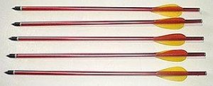 1Pack - 5 Bolts Arrows - FREE Shipping