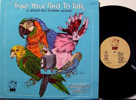 Train Your Bird To Talk - Vinyl LP Record - With Brochure - Pet Animal Instruction - Odd Unusual