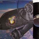 Blackfoot - Flyin' High - Vinyl LP Record - Rock