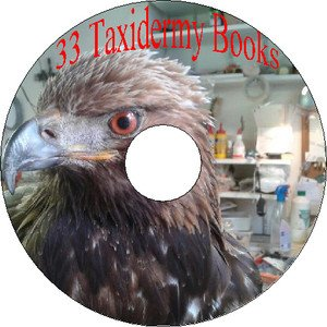 Taxidermy & Anatomy CD 33 Old Vintage Books How to