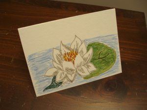 Handmade Blank card waterlily original