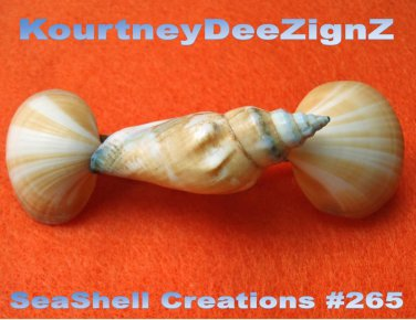Beach Handcrafted Seashells French Style Barrette #265 Hair & Accessory Jewelry