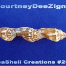 Beach Seashells French Style Barrette #267 Uniqie Hair Shirt Scarf Accessories