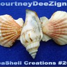 Beach Seashells French Style Barrette #269 Uniqie Hair Shirt Scarf Accessories