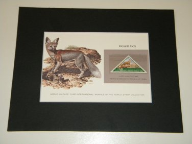 Matted Print and Stamp - Desert Fox - World Wildlife Fund