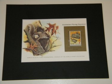 Matted Print and Stamp - Eurasian Flying Squirrel - World Wildlife Fund