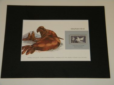 Matted Print and Stamp - Elephant Seal - World Wildlife Fund