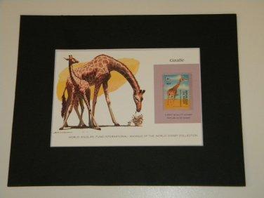 Matted Print and Stamp - Giraffe - World Wildlife Fund