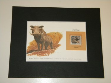 Matted Print and Stamp - Warthog - World Wildlife Fund