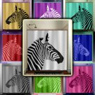 stripe horse zebra shower curtain  bathroom     window curtain