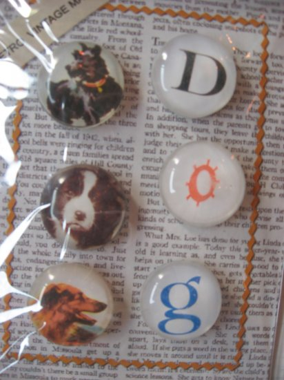 """Three Vintage Dog Pictures and """"D"""", """"O"""", """"G"""" Magnet Set"""