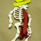 Hand Cut Paper Day of the Dead Skeleton with Hat and Scarf