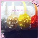 Carnation Headband-2